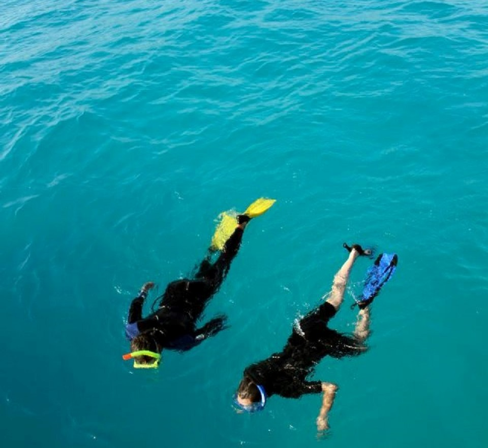 Perfect destination for animal watching and snorkeling